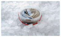 Siļķes fileja marinādē ar ādu 3kg