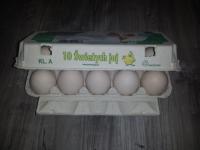 Olas baltas A klase L izmērs 10gab.